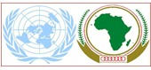African Union-United Nations Operation in Darfur (UNAMID)